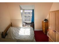 Double room in friendly spacious flat