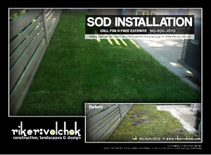 SOD INSTALLATION SPECIAL - FLAT RATE Kitchener / Waterloo Kitchener Area image 7