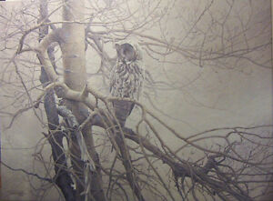 """Ghost of the North"" Giclee Canvas  Robert Bateman"