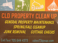 Property Clean Up!