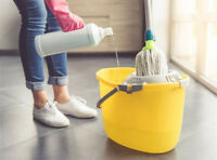 Cleaner Person