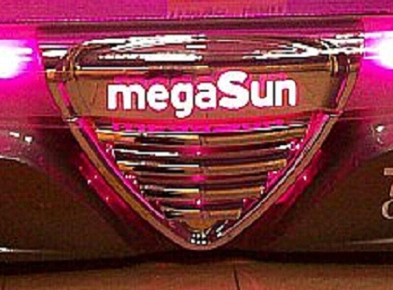 Mega Sun Tanning Bed Gas Springs Shocks Set of 2 shocks Fast