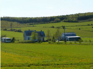 Mini Farm with house and barn on 3.23 Acres , very central