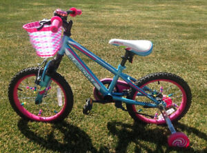 Valley Supercycle (children's bike)