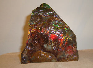 Ammonite / ammolite display piece