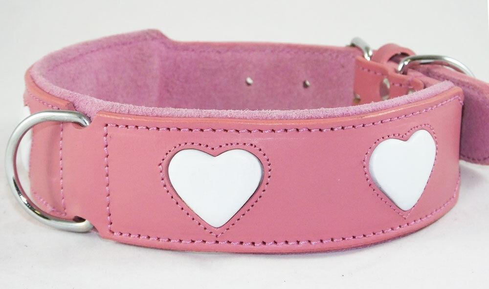 Dog Collars Uk Ebay