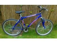 Mans boys mountain bike