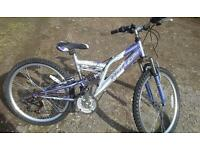 Girls 24 inch bike