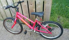 Kids RALEIGH D LITE for sale