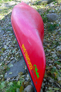 1 yr old 16 ft, Canoe with lower price London Ontario image 3