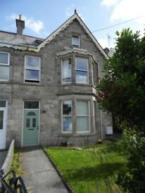 Large four bedroom end of terrace house - Alexandra Road