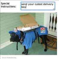 Pizza Delivery Drivers