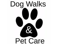 Dog Walking and Pet Care - Dunfermline and Surrounding Areas