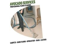 Avocado Services Carpet and Upholstery Cleaning