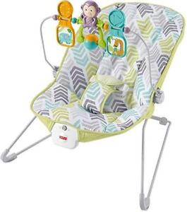 New Fisher-Price Baby's Bouncer, Green/Blue/Grey (MSRP $50), PICKUP ONLY - DI6