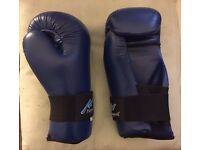 Playwell sparring mitts
