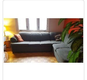 Sectional couch with hideaway bed!