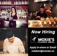 LOOKING FOR CAREER ORIENTED EMPLOYEES