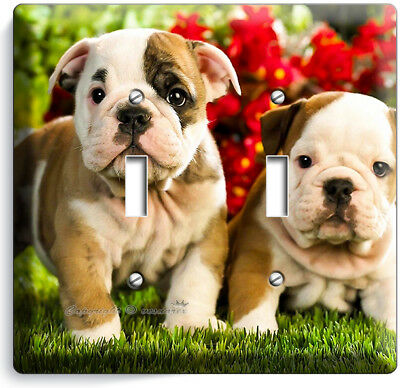 Buy cheap CUTE FRENCH BULLDOG products