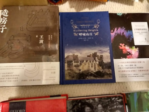 Assorted Chinese Books (Different types, various sizes)