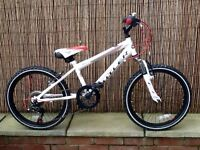 Claud Butler Torment Junior Mountain Bike 6 Speed. Suitable for age 6 years +. £75 no offers.