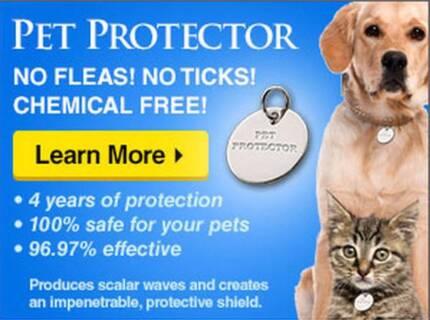 Non-Toxic Flea & Tick Discs - 4 Years Protection Ipswich Ipswich City Preview