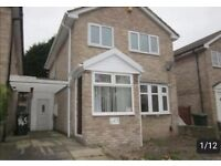 Beautiful 3 Bed detached, conservatory, drive and gareden BD14 6EN area - £169000 or nearest offer