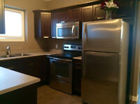 Perfect for Professionals! 2 BDRM Suite available now!