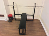 Olympic weight Bench and Standard bar only 100.