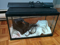Aquarium (10 gal) et accessoires / Fish tank and accessories