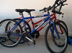 Two bikes for only $120