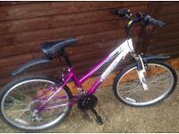 """Terrain Snowdon 24"""" Mountain Bike"""