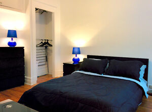 Beautiful furnished room on Queen Mary near UdeM (for June 1st).