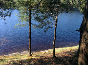 Waterfront Lot - 3.3ac, 300ft shore, paved access