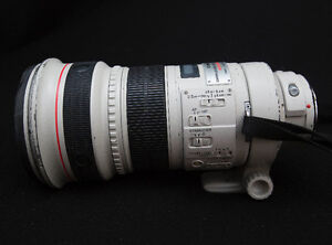 Canon 300 mm 2.8 L IS Version I
