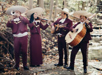 Mariachi band, Hula dancers - visit the tropics right here!