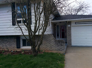House for rent in Thorold; Good for 2 families or 2 generations