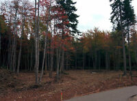 Forest Trails-Single Lot