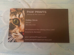 Insured and Bonded Cat,House,Pet Sitting,Cat Sitter,Free Meeting