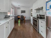 Luxueux appartement entièrement rénové, Ville Saint-Laurent