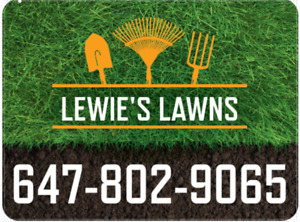 Lawn Cutting and Landscaping - Lewie's Lawns