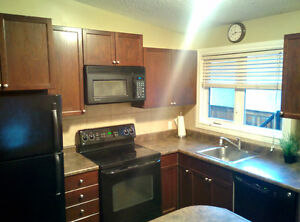 Clean Upgraded and Furnished 2 Bedroom Suite