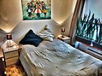 4 1/2 meublé + tout inclus St-Denis Plateau Mont Royal