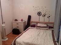 Room in NDG - Lease transfer from Jan 1º - Perfect for students