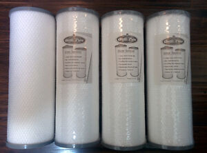 4x Silver Sentinel Filters for Arctic Spas (2008 and newer)