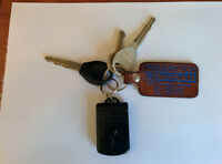 NISSAN KEYS FOUND - SPRINGHILL ROAD CROSS FROM NETHERVIEW PARK