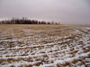 119 CULTIVATED ACRES PLUS ADJACENT GRAZING LEASE