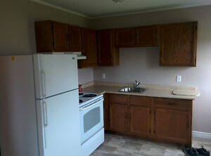 Newly renovated 2bdrm for rent in Glace Bay with full basement
