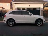 2010 Audi Q5 3.2L S-Line Premium Package! CERTIFIED SAFETY&ETEST