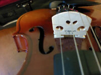 $100 Violin for Sale**NEVER BEEN USED**
